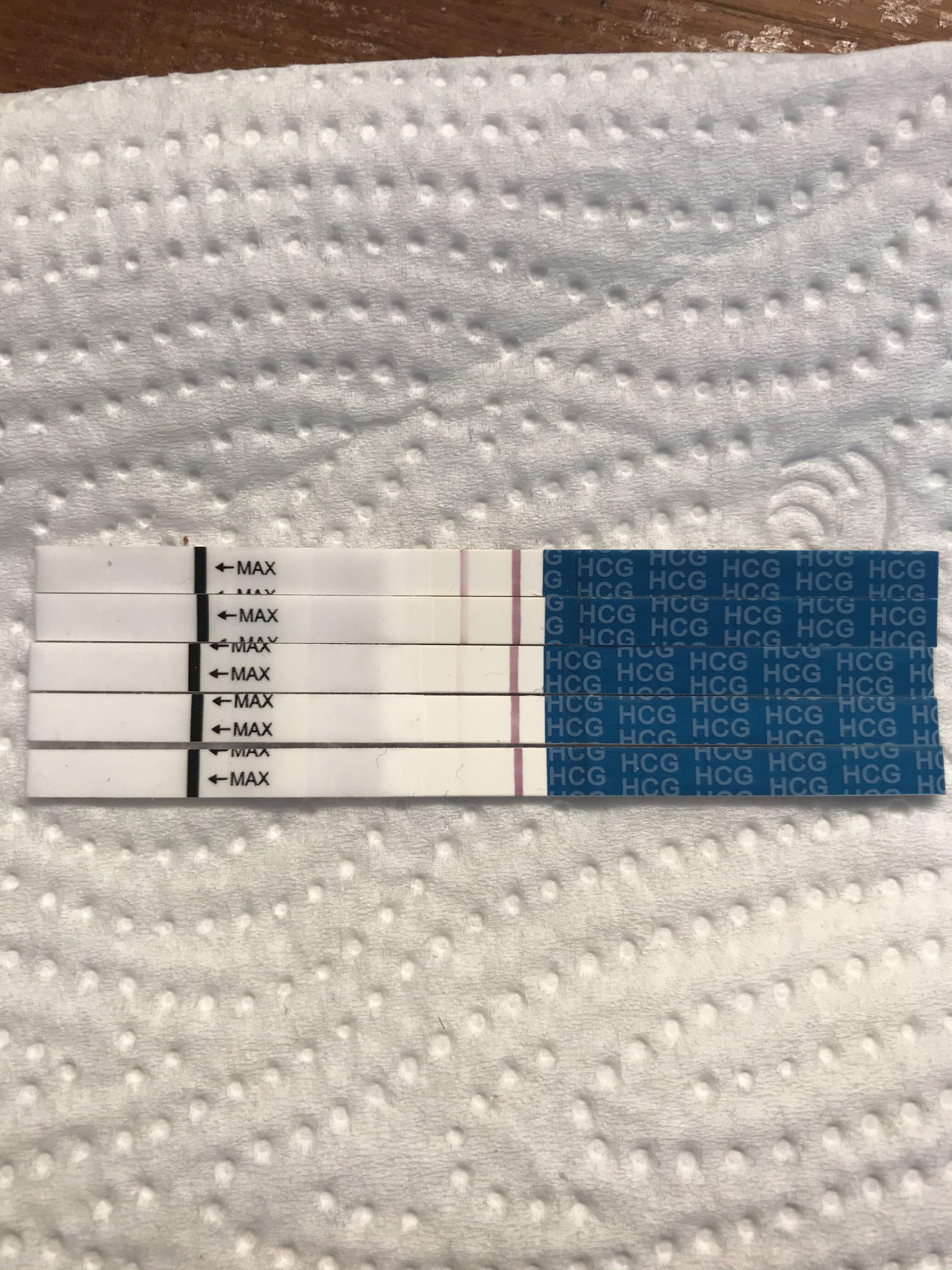 64C4115B-495F-4140-8A94-BE4D1E86E9C0.jpeg